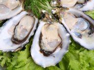 Hàu biển tăng cường sinh lý đàn ông