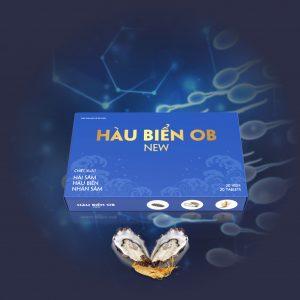 hau-bien-ob-new (16)