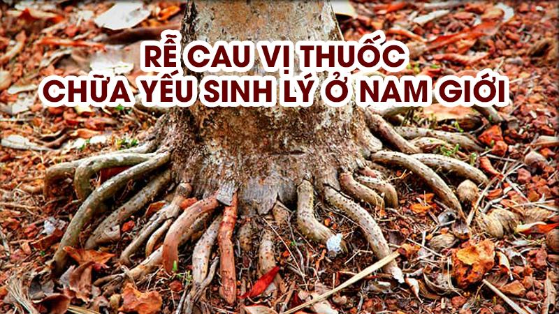 chua-yeu-sinh-ly-bang-re-cau (1)